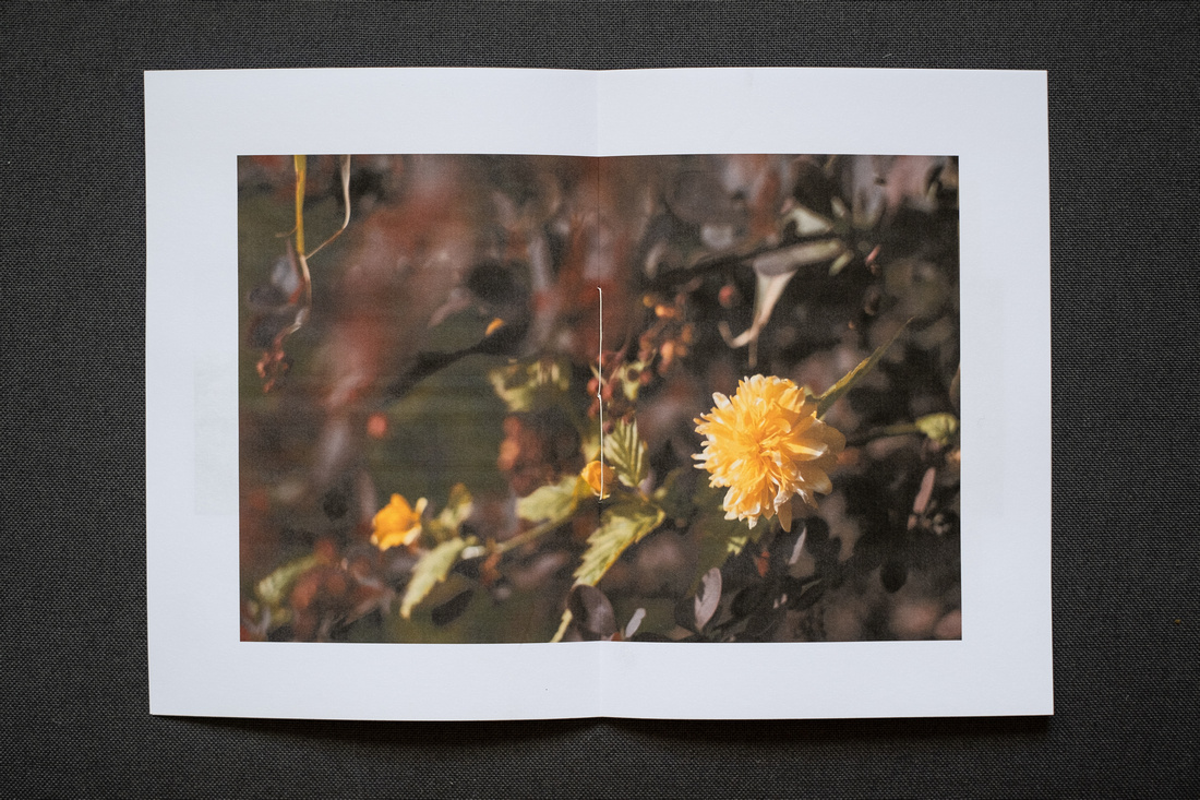 Photograph of a printed A5 Zine on a dark grey fabric background.