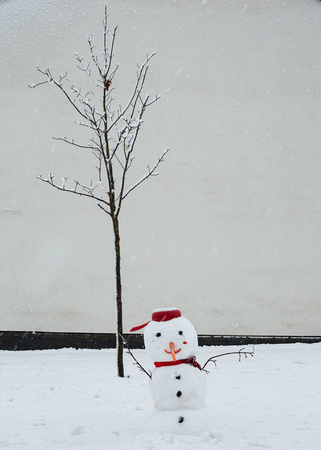 A snowman and a tree.